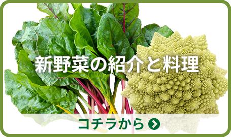 新野菜の紹介と料理