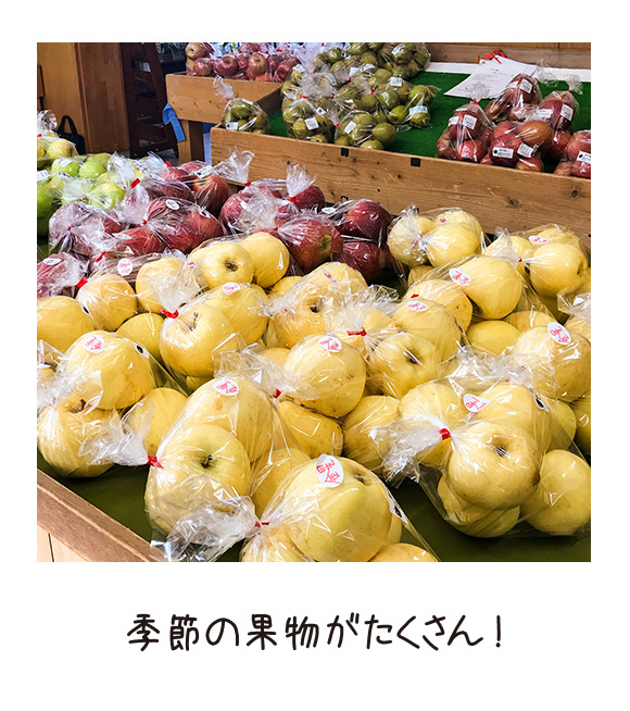 季節の果物がたくさん!